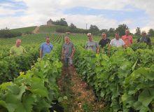 Une douzaine de coopérateurs volontaires de la cave de Buxy (71) se sont impliqués dans un groupe de travail sur la réduction des produits phytosanitaires. La coopérative bourguignonne est labellisée Vignerons engagés depuis 2013. Photo :Vignerons de Buxy