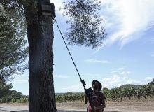 «Les nichoirs pour les oiseaux ou les gîtes pour les chauves-souris sont un moyen simple de ramener de la biodiversité intraparcellaire», estime Brice le Maire. Photo : Agri nichoirs