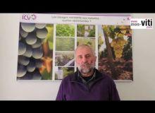 Les cépages résistants expliqués par Jacques Rousseau du groupe ICV