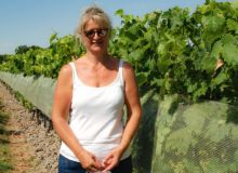Pour Béatrice Blin, viticultrice à Rouillac, les filets paragrêle sont la solution: «En deux coups de grêle, votre retour sur investissement est assuré.» Photo : O.Lévêque/Pixel Image