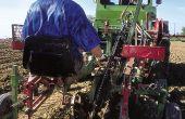 Le document mentionne pour chaque poste (taille, palissage, rognage, vendanges, pressurage…) une dépense maximale et un temps de travail qui fournissent des repères, notamment pour les jeunes viticulteurs qui s'installent «hors cadre».  Photo : F. Pierrel/Pixel Image