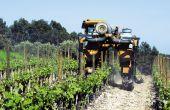 Des vignerons choisissent d'arrêter  les produits phytosanitaires classés les plus nocifs pour la santé et l'environnement. © F. Pierrel/pixel image