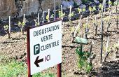 Les domaines viticoles ne commercialisant que leurs propres prestations sont dispensés (sauf si celles-ci font partie d'un voyage individuel ou collectif). Photo : Laurent Theeten/pixel image