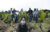 L'échange avec les viticulteurs fait partie intégrante de la méthode Hérody: «Ce n'est pas la géologie qui fait le terroir (même si elle joue un rôle), c'est d'abord le vigneron!», déclare-t-il. Photo : Ireène Aubert/Pixel Image