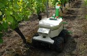 Oz, le robot de Naïo technologies, est destiné  au binage dans les vignes  ou en maraîchage.  Photo : O. Lévêque/Pixel image