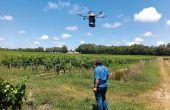 Un drone, des drones… Il existe différents systèmes de drones: certains types «mini-hélicoptères, mini-avions (= multirotors), ou mini-aile volante, pour un même usage avec des spécificités différentes: l'aile volante pour les grandes surfaces, les multi-rotors pour descendre dans les rangs. © DR