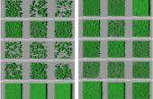 Biofilms formés par les souches de brettanomyces, à la surface de microplaques. © JM. Herry / UMR AgroParisTech – INRA MICALIS