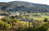 «Castelbarry», le nouveau nom  de la cave coopérative de Montpeyroux, s'inspire des ruines du Castellas qui dominent le village, et du hameau du Barry. Photo : Alain Tendero