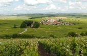 Le village d'Ecueil près de Reims. Après LE champagne, les touristes viendront-ils plus nombreux savourer LA Champagne et ses jolis coteauxclassés (ou pas)? Photos: Michel Jolyot