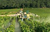 Les essais menés en 2015  ont permis de définir les largeurs de poudrage  à ne pas dépasser selon les configurations de la poudreuse dans un contexte de vignes étroites (1m x 1m). © CA 21