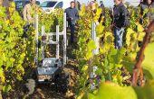 Les premiers essais au vignoble du projet Chaif, menés en 2016, ont été concluants. Un dispositif d'ampoules leds, s'allumant ou non, a permis de simuler les séquences de pulvérisation.