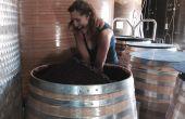 Le château Grézan a expérimenté en 2016 la macération sur douelles avant entonnage, comme alternative à la vinification intégrale pour ses vins rouges. Photo DR