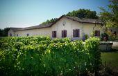 En plus de la réduction des intrants, le domaine bordelais Château Brown a mis en place un suivi précis des traitements phytosanitaires. © Château Brown