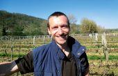 «Nous avons gardé une parcelle de segalin cinq ans de plus, car les maladies du bois n'évoluent plus», témoigne Jérôme Couture. © Chambre d'agriculture du Lot