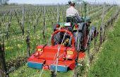 Faut-il tondre le couvert entre les rangs de vigne. © Humus
