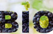 Des études montrent qu'au niveau mondial, et plus particulièrement en France, l'offre en vin bio progresse, tout comme la demande.
