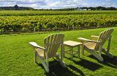 Avec le confinement, les réservations tourtistiques dans les domaines viticoles sont à l'arrêt.Adobe Stock/Elenathewise