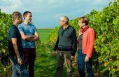 La famille Hautier au complet devant les vignes du domaine viticole du Chapitre en Belgique