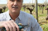 Le départ à la retraite du viticulteur est toujours un moment difficile à appréhender, car cela demande beaucoup de préparation et des conseils adaptés. Photo : Auremar Fotolia
