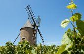 Moulin-à-vent est le cru revendiquant le plus de lieux-dits, d'après l'enquête effectuée sur le millésime 2011. Photo : visuall2/Fotolia