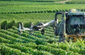 La mise en place des certificats d'économies de produits phytosanitaires CEPP prend forme.  Photo : N. Chemineau/Pixel Image
