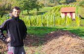 Rémi Gauthier cultive  sa vigne dédiée en majorité  à l'auxerrois. Photos: DR